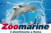 parco aquatico zoomarine